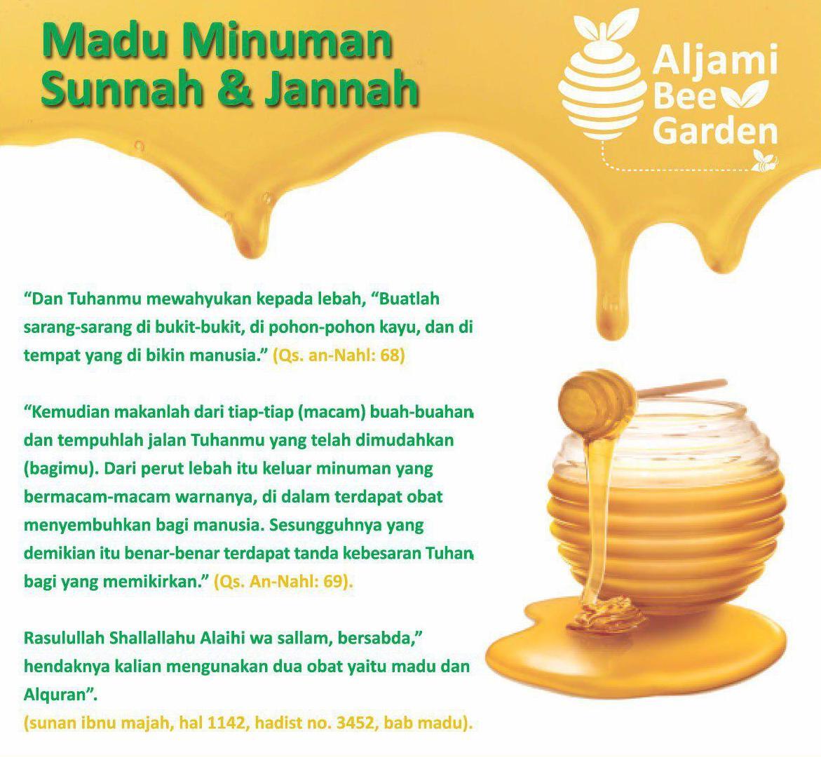manfaat madu - kavling aljami bee garden