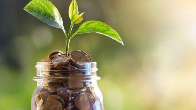 Tanah Kavling Produktif sebagai Investasi Menguntungkan Masa Kini