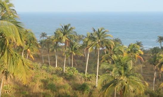 lokasi green coco land cinajur