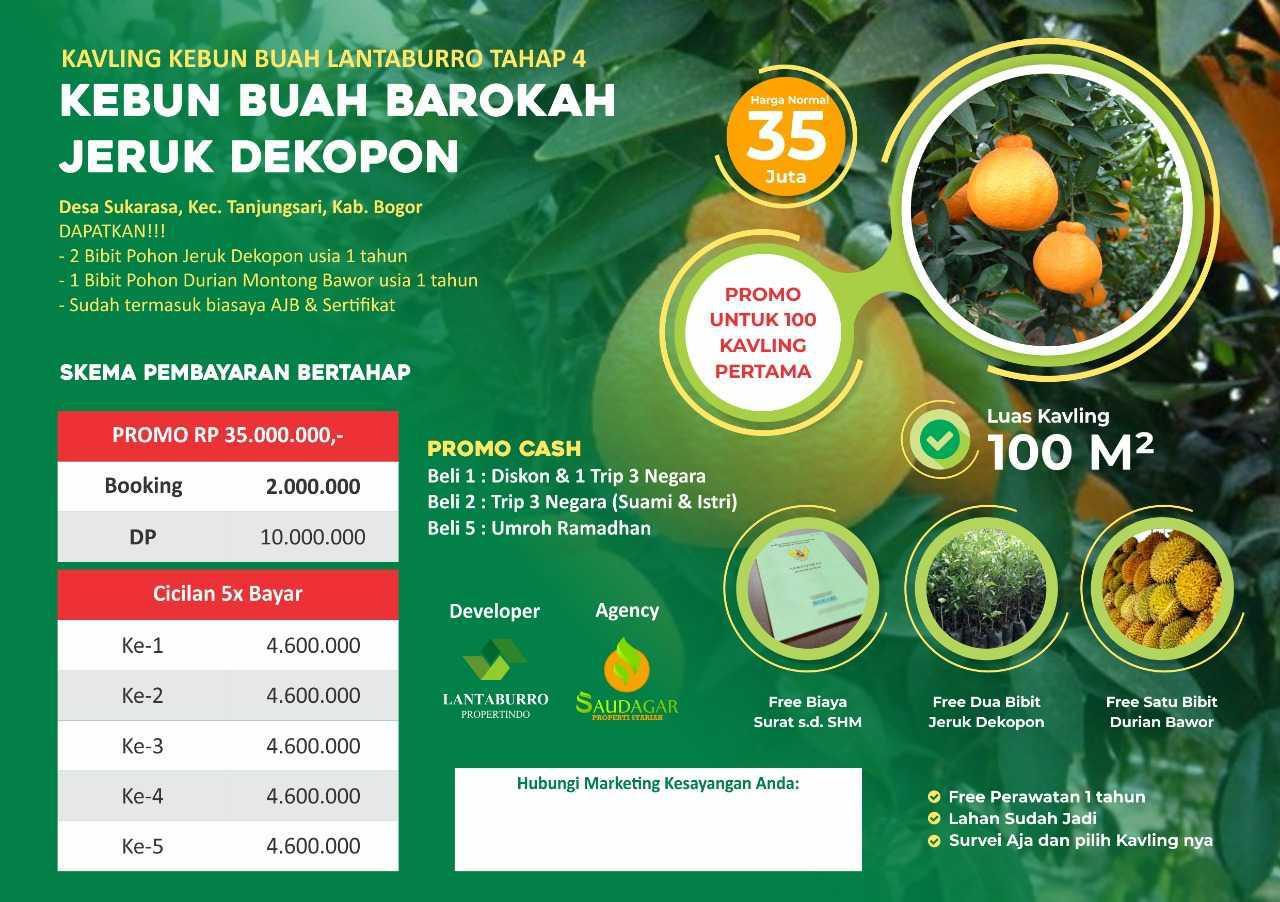 kavling jeruk dekopon
