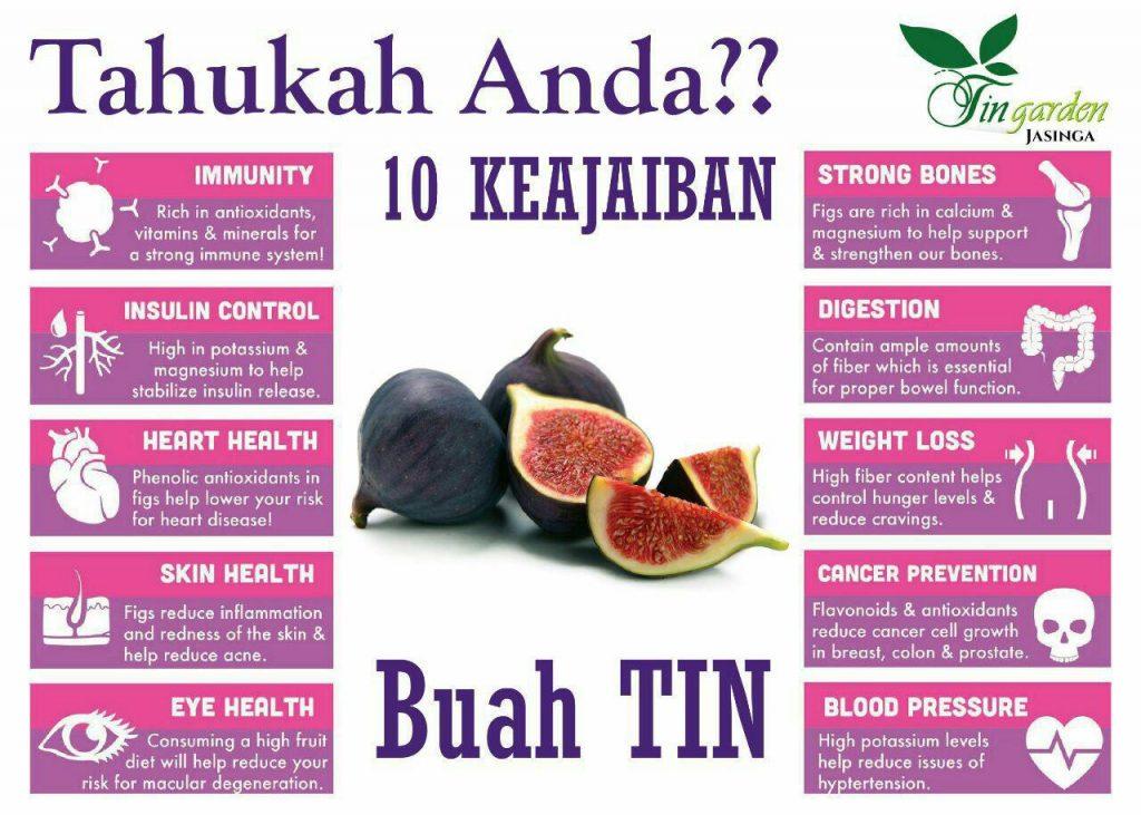 kavling buah tin - manfaat buah tin
