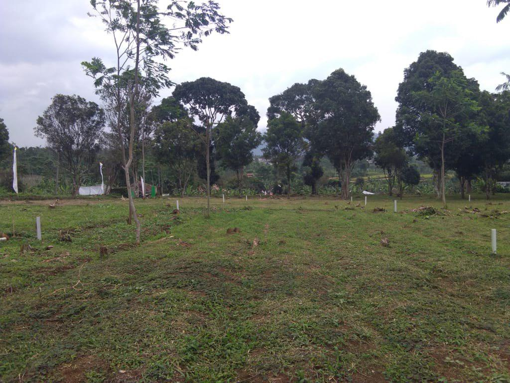 lahan kampung quran cianjur