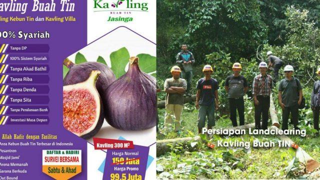 Miliki Lahan Produktif – Kavling Buah Tin 300 m2 di Jasinga Bogor